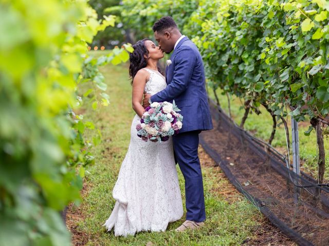 Hassan and Alexandra's Wedding in Fredericksburg, Virginia 21