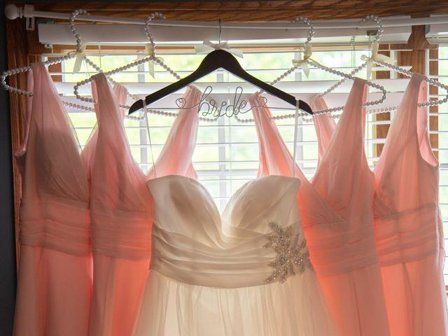 Stephanie and Josh's Wedding in Avon Lake, Ohio 6
