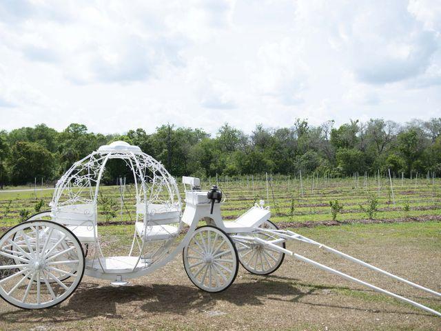 Colon and Wanda's Wedding in Minneola, Florida 16