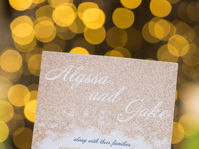 Jake and Alyssa's Wedding in Warrenton, Virginia 17