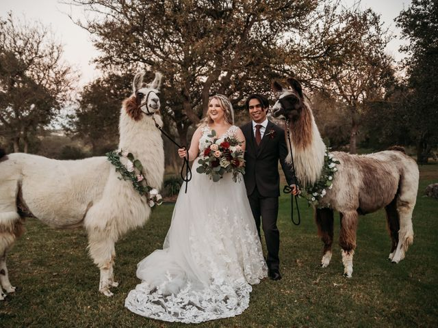 Christian and Cassidy's Wedding in New Braunfels, Texas 9