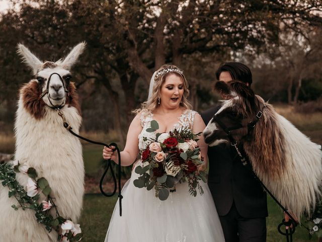 Christian and Cassidy's Wedding in New Braunfels, Texas 68