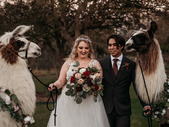 Christian and Cassidy's Wedding in New Braunfels, Texas 69