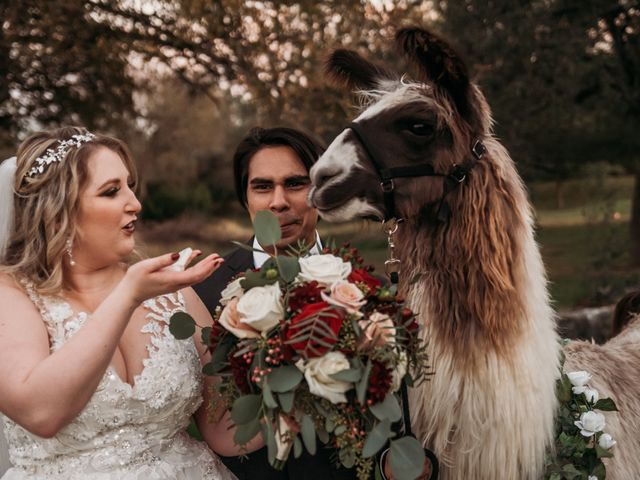 Christian and Cassidy's Wedding in New Braunfels, Texas 70