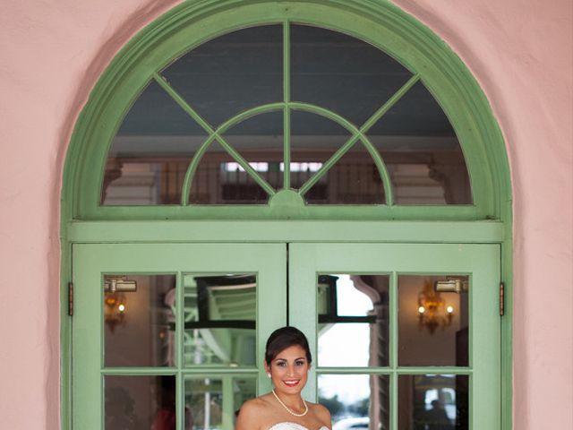 Tina and Andrew's Wedding in Saint Petersburg, Florida 2