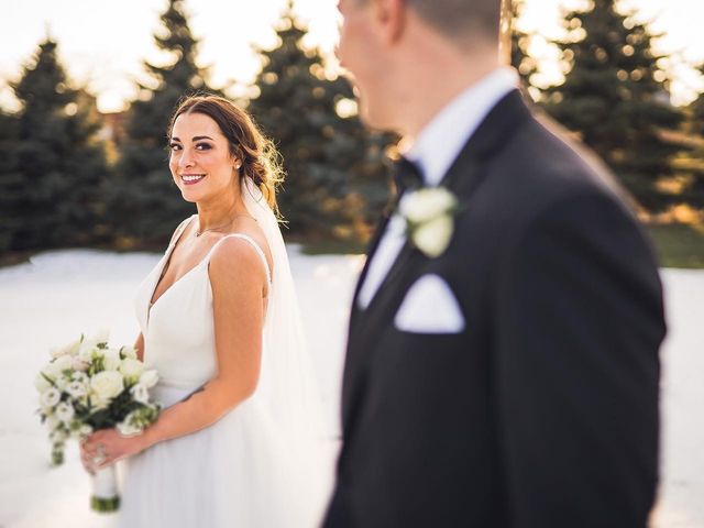 James and Emily's Wedding in Aurora, Illinois 2