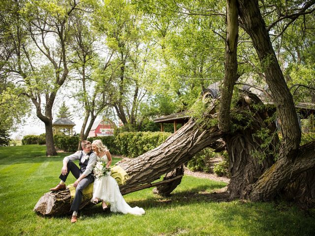 The wedding of Dani and Tyler