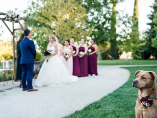 The wedding of Samantha and Mike 2