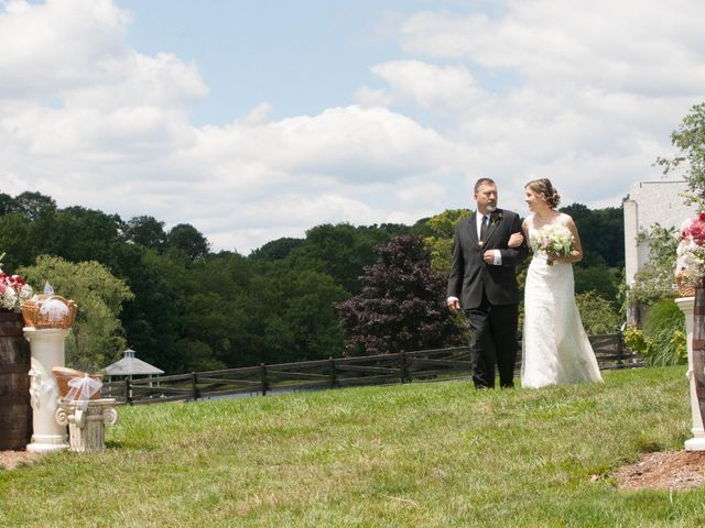 Luke and Lauryn's Wedding in Rockwood, Pennsylvania 8