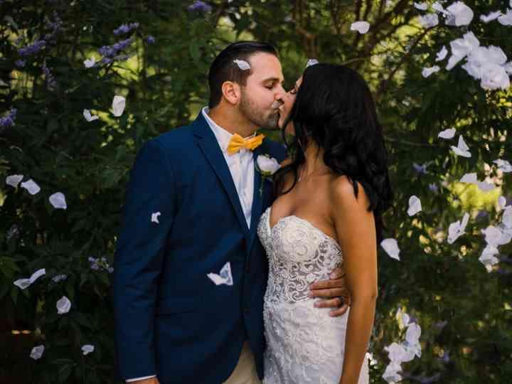 The wedding of Jonathan and Amber
