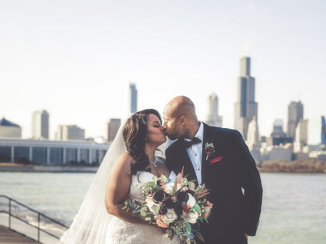 Dene and Chris's Wedding in Chicago, Illinois 2