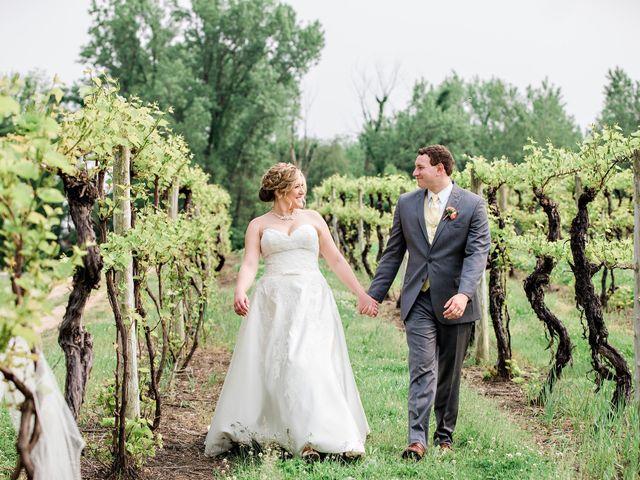 Edward and Diana's Wedding in Buchanan, Michigan 107
