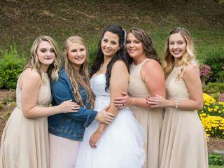 Robin and Stephanie's Wedding in Asheville, North Carolina 3