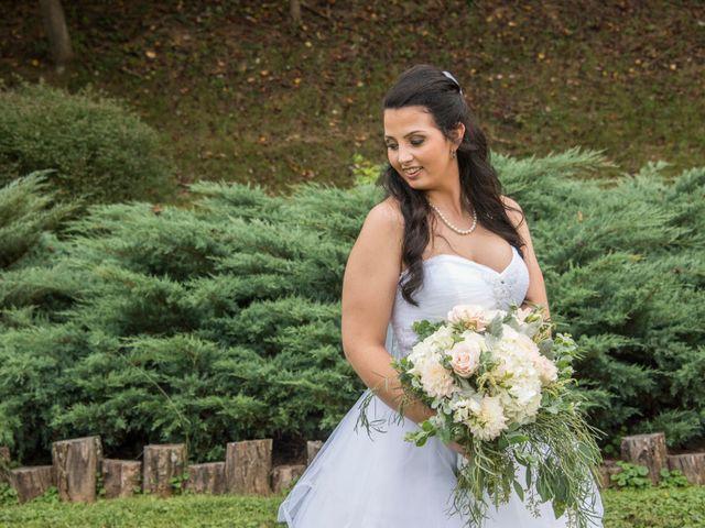 Robin and Stephanie's Wedding in Asheville, North Carolina 2