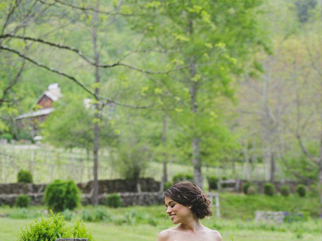 Nicole and Jeremy's Wedding in Sylva, North Carolina 5