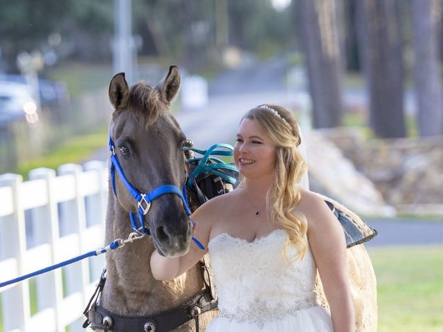 Ryan and Danielle's Wedding in Dade City, Florida 63