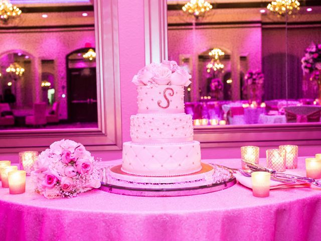 Ray and Tealina's Wedding in Orlando, Florida 2