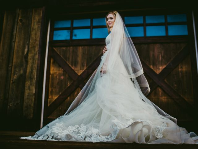 Ryan and Alexandra's Wedding in Cleveland, Ohio 2