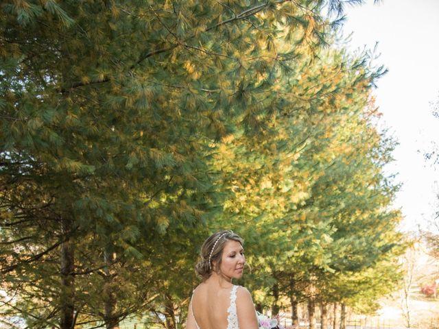 Derek and Blair's Wedding in Asheville, North Carolina 5