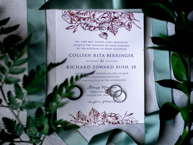 Richard and Colleen's Wedding in Dickerson, Maryland 4