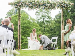 The wedding of Shelby and Sean