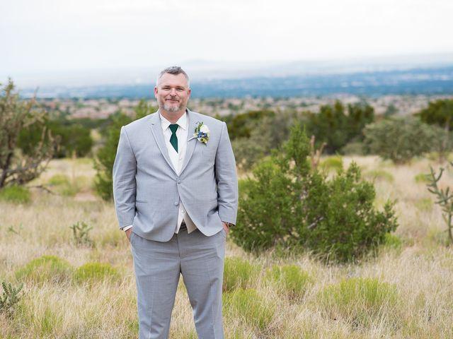 Alison and Matt's Wedding in Albuquerque, New Mexico 27