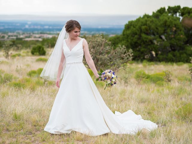 Alison and Matt's Wedding in Albuquerque, New Mexico 28