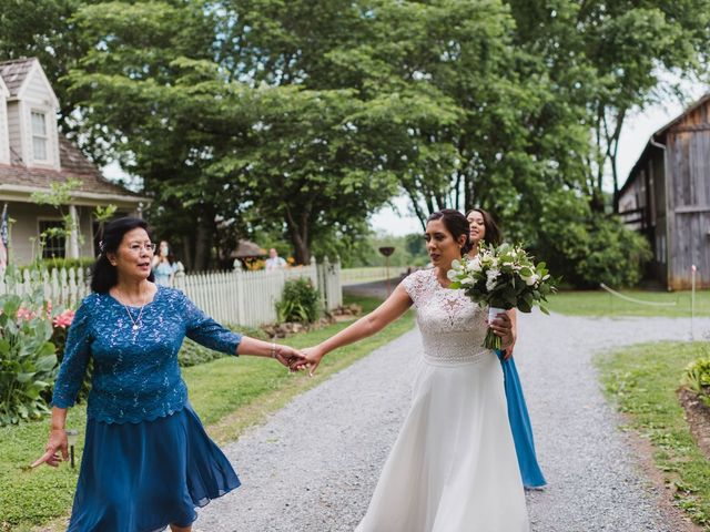 Vikram and Mary's Wedding in Purcellville, Virginia 10