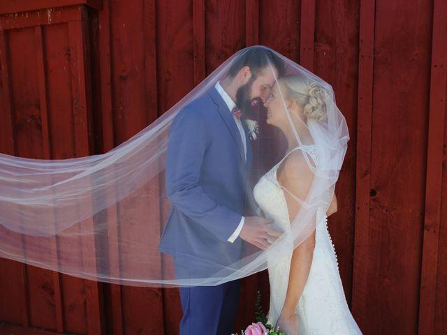 The wedding of Rob and Alisa