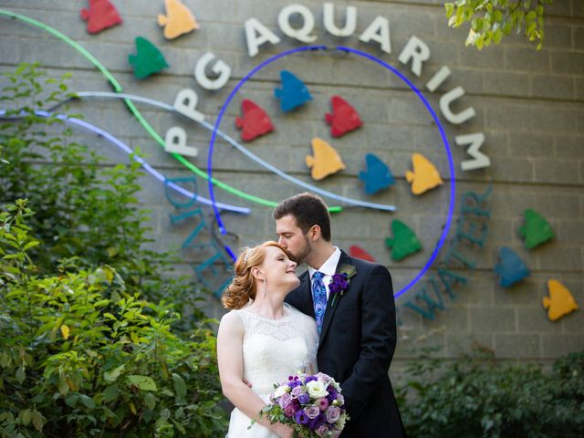 The wedding of Amy and Zach