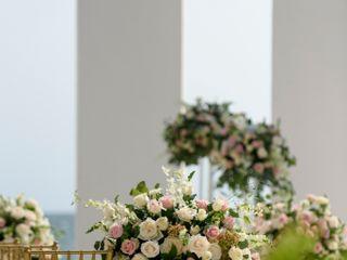 The wedding of Monica and Adam 3