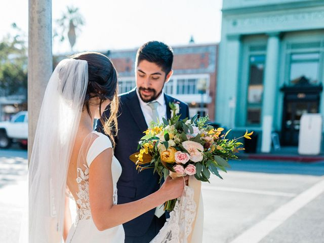Max and Anne Marie's Wedding in Calistoga, California 37