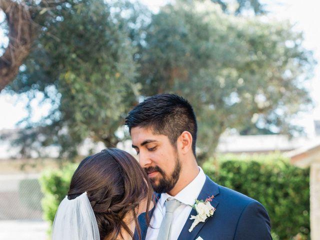 Max and Anne Marie's Wedding in Calistoga, California 2