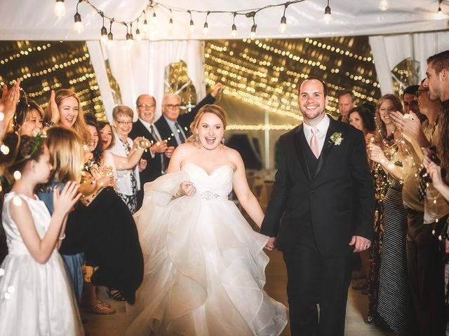 Evan and Emily's Wedding in Holland, Michigan 1