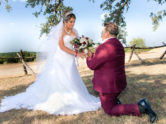 Jessica and Lauro's Wedding in Dripping Springs, Texas 24