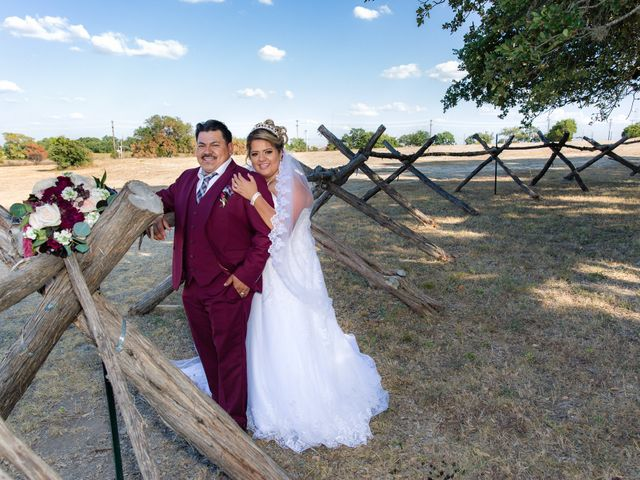 Jessica and Lauro's Wedding in Dripping Springs, Texas 25