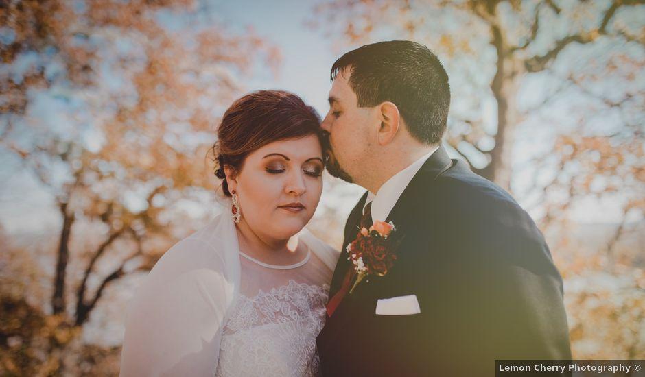 Sam and Erica's Wedding in Saint Louis, Missouri