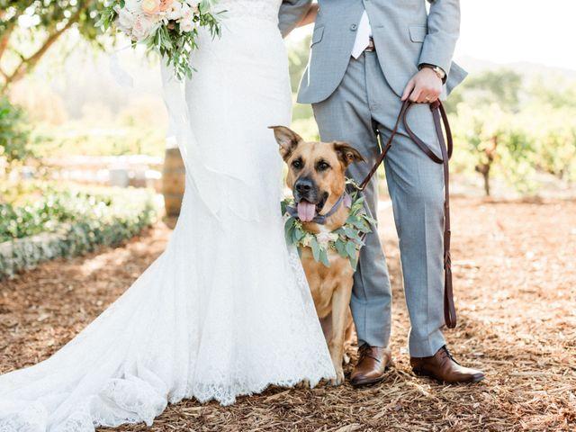 Jamis and Maddie's Wedding in Saint Helena, California 17
