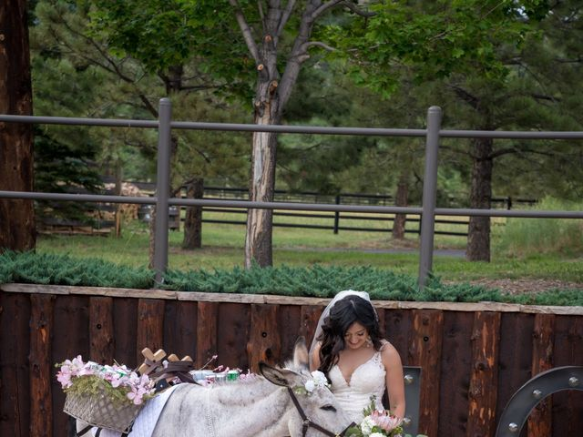Esteban and Nayely's Wedding in Larkspur, Colorado 14