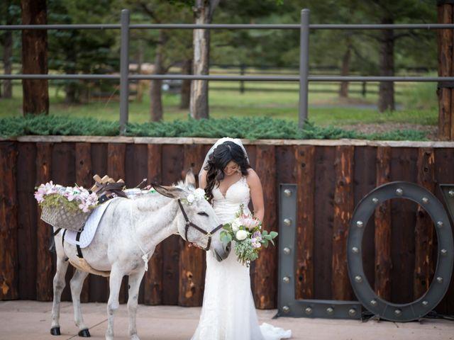 Esteban and Nayely's Wedding in Larkspur, Colorado 16