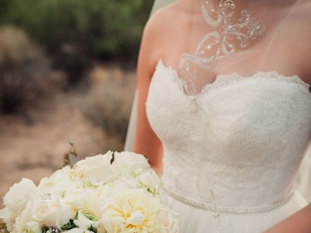 Daria and Chad's Wedding in Mesa, Arizona 8