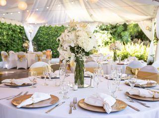 The wedding of Ruxandra and Aymen 3