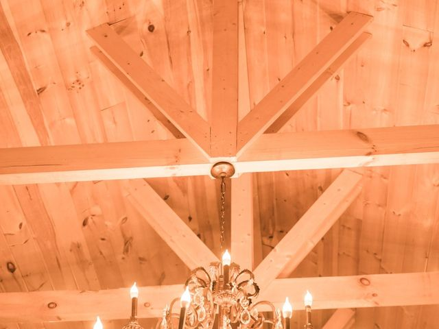 Shawn and Brittany's Wedding in Pigeon Forge, Tennessee 28