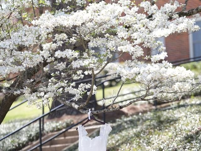 Gabrielle and Andrew's Wedding in Oxford, Mississippi 1