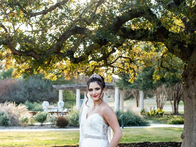 Neda and Farhad's Wedding in Georgetown, Texas 11