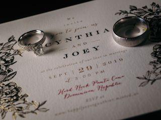 The wedding of Cynthia and Joe 2