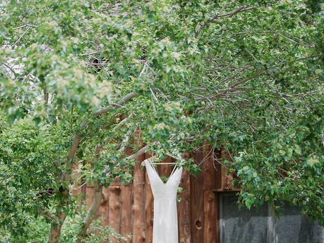 Mike and Tina's Wedding in Larkspur, Colorado 31