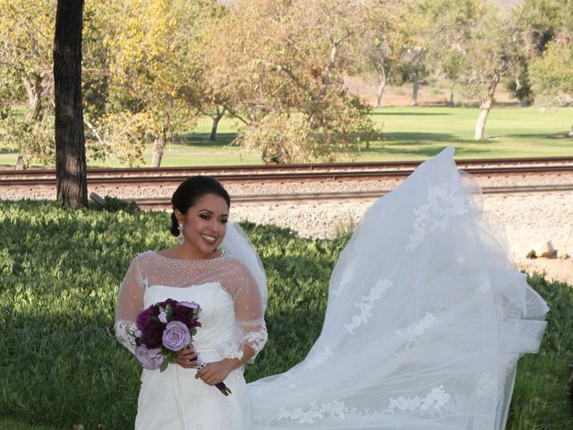 David and Sonia's Wedding in Corona, California 4