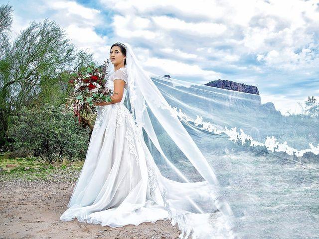 Trisha and Michael's Wedding in Gold Canyon, Arizona 15