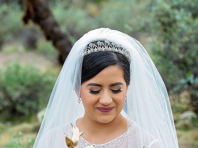Trisha and Michael's Wedding in Gold Canyon, Arizona 21